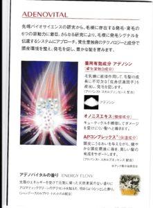 IMG_20171201_0001 (2)